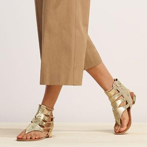Aldo Shoes - Aldo Athena Gold Gladiator Sandals